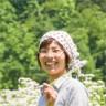 加奈子渡邉